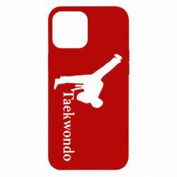 Чехол для iPhone 12 Pro Max Taekwondo