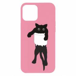Чехол для iPhone 12 Pro Max The cat tore the pocket