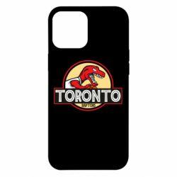 Чехол для iPhone 12 Pro Max Toronto raptors park