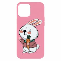 Чохол для iPhone 12 Pro Max Winter bunny