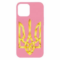 Чехол для iPhone 12 Pro Max Золотий герб