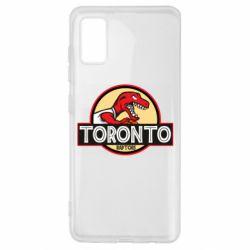 Чехол для Samsung A41 Toronto raptors park