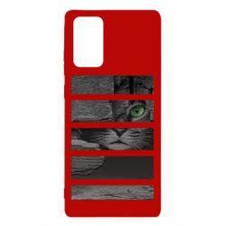 Чехол для Samsung Note 20 All seeing cat