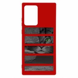 Чехол для Samsung Note 20 Ultra All seeing cat
