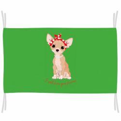 Прапор Чиахуа