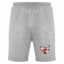 Мужские шорты Chicago Bulls бык - FatLine