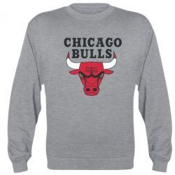 Реглан (свитшот) Chicago Bulls Classic