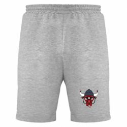 Мужские шорты Chicago Bulls Swag - FatLine