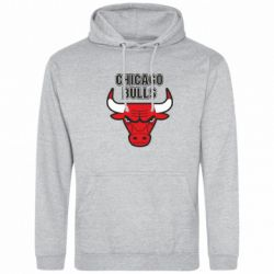 Толстовка Chicago Bulls vol.2 - FatLine