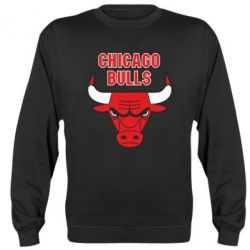Реглан (свитшот) Chicago Bulls vol.2 - FatLine