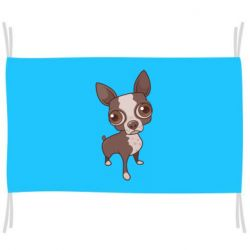 Флаг Чихуахуа