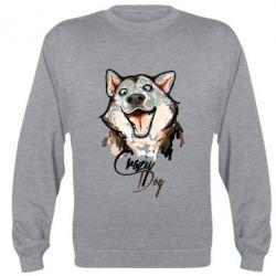 Реглан Crazy Dog