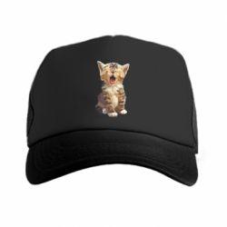 Кепка-тракер Cute kitten vector