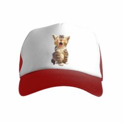Дитяча кепка-тракер Cute kitten vector