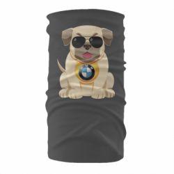 Бандана-труба Dog with a collar BMW