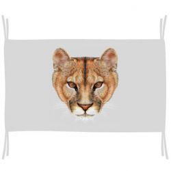 Прапор Drawing of a lioness