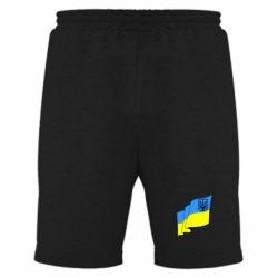 Мужские шорты Флаг Украины с Гербом - FatLine