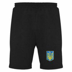 Мужские шорты Герб України 3D - FatLine
