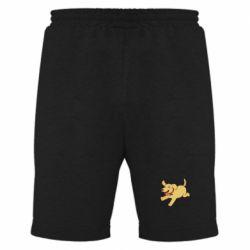 Мужские шорты Golden retriever
