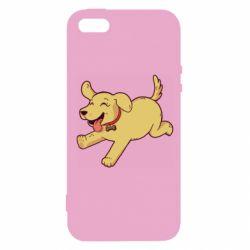 Чехол для iPhone5/5S/SE Golden retriever