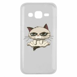Чохол для Samsung J2 2015 Grumpy Cat Art nope