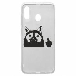 Чохол для Samsung A20 Grumpy cat F**k Off