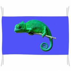 Флаг Хамелеон