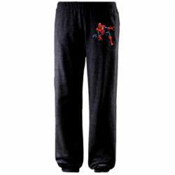 Штаны Hero Spiderman