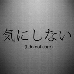 Наклейка I dont care