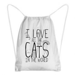 Рюкзак-мешок I Love all the cats in the world