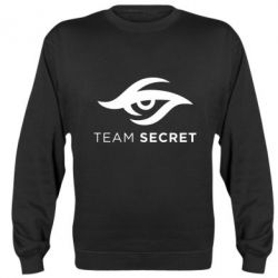 Реглан (свитшот) IG Team Secret