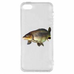 Чехол для iPhone5/5S/SE Карасик