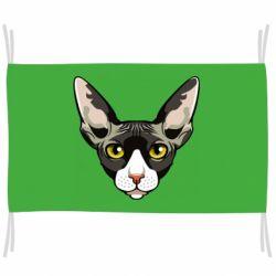 Прапор Котя сфінкс жовті очі