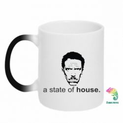 Кружка-хамелеон Astate of House