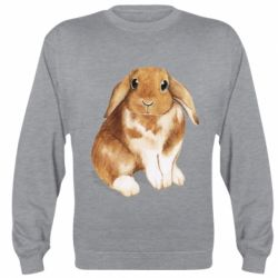 Реглан (світшот) Маленький кролик