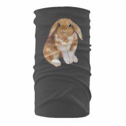 Бандана-труба Маленький кролик