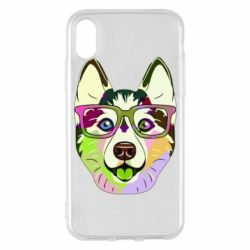 Чохол для iPhone X/Xs Multi-colored dog with glasses