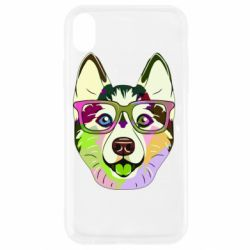 Чохол для iPhone XR Multi-colored dog with glasses
