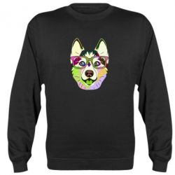 Реглан (світшот) Multi-colored dog with glasses
