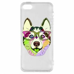 Чохол для iphone 5/5S/SE Multi-colored dog with glasses