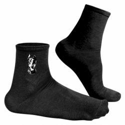 Чоловічі шкарпетки Доберман чорний