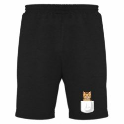 Мужские шорты Cat in your pocket