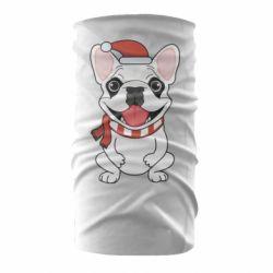 Бандана-труба New Year's French Bulldog