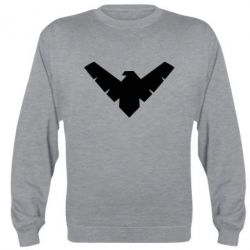 Реглан (свитшот) Nightwing Logo
