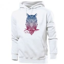 Мужская толстовка Owl Art - FatLine