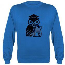 Реглан (свитшот) Owl Lawyer