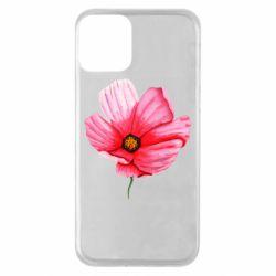 Чехол для iPhone 11 Poppy flower