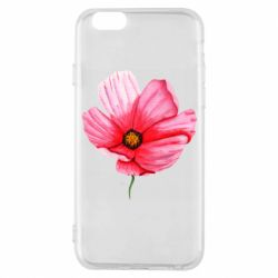 Чехол для iPhone 6/6S Poppy flower