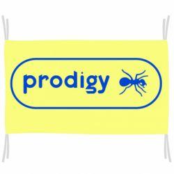 Прапор Prodigy Логотип