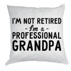 Подушка Professional Grandpa